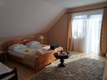 Accommodation Bisericani, Hegyi Kő B&B