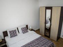 Accommodation Sebeș, Cetate Turn Apartment