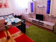 Accommodation Cégénydányád, Apartment Csillag