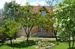 Villa Brulya (Bruiu), Prund Villa
