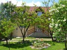 Villa Sibiu county, Prund Villa