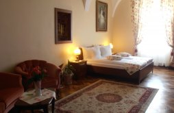 Guesthouse near Valea Viilor fortified church, Gothic House