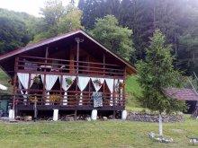 Cabană Mocrea, Cabana Cazanesti