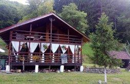 Cabană Pișchia, Cabana Cazanesti