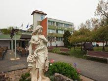Accommodation Southern Transdanubia, Komfort Hotel Platán