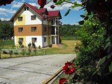Accommodation Pleșoiu (Livezi), Casa Rada Guesthouse