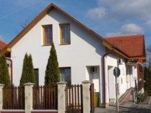 Casă de oaspeți Tiszaszalka, Casa de oaspeți Üveghíd