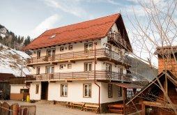Accommodation Moieciu de Sus, Mălina B&B