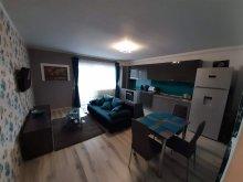 Apartment Olariu, Turquoise Apartment