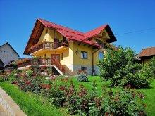 Accommodation Mănăstirea Humorului, Steluța de Munte Guesthouse