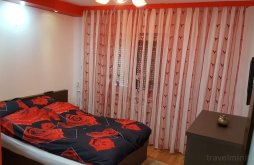 Apartament județul Bihor, Apartament Raul