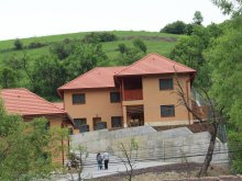 Accommodation Praid, 77 Guesthouse