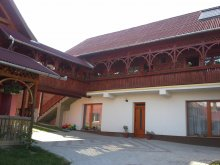 Accommodation Cristuru Secuiesc, Éva Guesthouse