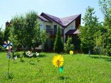 Pachet Complex Weekend Târgu-Mureș, Pensiunea Casa Cândea