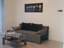 Apartment Pietroasa, White & Silver Luxury Suite
