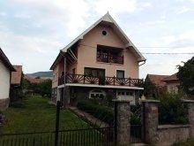 Accommodation Zetea, Borsika Guesthouse