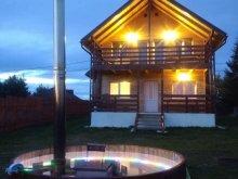 Vacation home Oșorhel, Panorama Apuseni Guesthouse