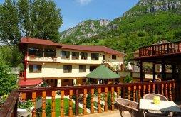"""Accommodation Bánsági-hegyvidék, Cuibul Viselor """"La Johnny"""" Guesthouse"""