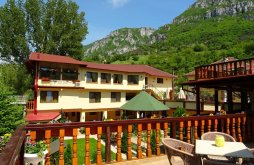 "Accommodation near Băile Herculane, Cuibul Viselor ""La Johnny"" Guesthouse"