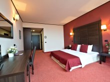 Apartament Jimbolia, Hotel Aurelia