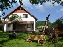 Accommodation Bucin (Praid), Damarisz Guesthouse