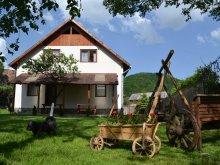 Accommodation Harghita county, Damarisz Guesthouse
