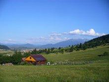 Casă de vacanță Ștrand Sinaia, Casa de vacanță Piatra Mica