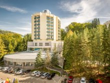 Hotel Bistrița Bârgăului, Ensana Brădet