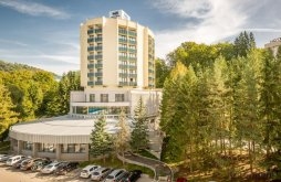 Spa offers Romania, Bradet Ensana Hotel