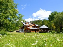 Bed & breakfast Podeni, Pensiunea Guesthouse