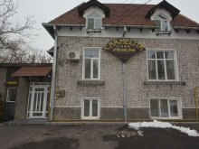 Apartment Dolj county, Carmelita Guesthouse