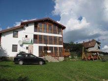 Cabană Făgăraș, Casa Hille