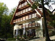 Accommodation Albeștii Pământeni, Opus Villa