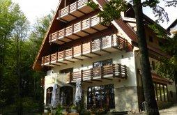 Bed & breakfast near Peleș Castle, Opus Villa