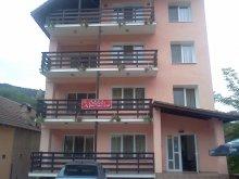 Vilă Pleșoiu (Nicolae Bălcescu), Apartamente Olănești