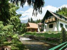 Szállás Békás-szoros, Tichet de vacanță / Card de vacanță, Red Lake Inn Panzió