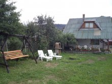 Accommodation Romania, Magdolna Guesthouse