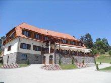 Cazare Satu Nou (Siculeni) cu Tichete de vacanță / Card de vacanță, Pensiunea Farkas