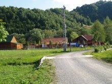 Cazare Păltiniș-Ciuc, Pensiunea Deáky