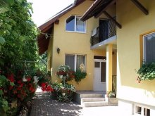 Accommodation Luna de Sus, Balint Gazda Guesthouse