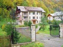 Cazare Slănic Moldova, Pensiunea Casa Albă
