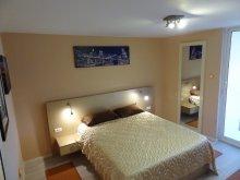 Accommodation Galați county, Faleza Clasic Apartment
