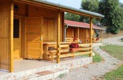 Guesthouse Bacău county, Biotour Guesthouse