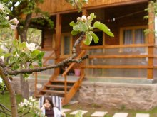 Accommodation Dezna, Maduta Chalet