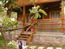 Accommodation Romania, Maduta Chalet