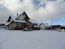 Accommodation Piatra Fântânele, Ziana Guesthouse