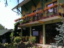 Accommodation Satu Mare county, Brigi B&B