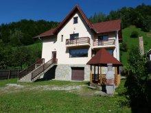 Accommodation Moieciu de Sus, Roua Guesthouse