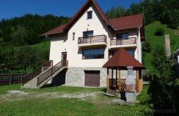 Accommodation Șimon, Roua Guesthouse