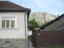 Accommodation Ocolișel, Botár Klára Guesthouse